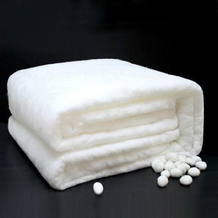 维众100%双宫桑蚕丝内胆4斤(送全棉网布套)·白色